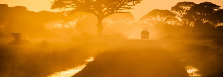 safari reis